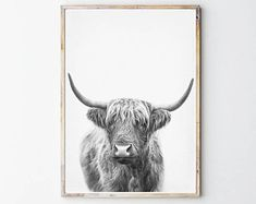 Trendy Printable Art And Photography by SisiAndSeb Black And White Posters, Black And White Canvas, Canvas Artwork, Canvas Prints, Art Prints, Highland Cow Print, Cow Art, Kitchen Wall Art, Rind