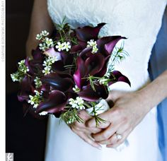 Eggplant Calla Lillies...favorite color and flower.