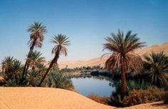 An oasis in the Libyan desert.   THE LIBYAN  Esther Kofod  www.estherkofod.