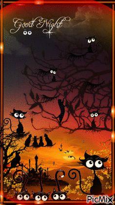 The night has a thousand eyes. Good Night Greetings, Good Night Messages, Good Night Wishes, Good Night Quotes, Cute Good Night, Good Night Moon, Good Night Image, Good Morning Good Night, Moon Pictures