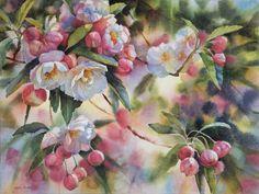Apple Blossoms, watercolor, by Svetlana Orinko Watercolor Fruit, Watercolour Painting, Watercolor Flowers, Watercolors, Abstract Flowers, Apple Flowers, New Zealand Art, Art Society, Artist Painting