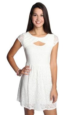 all over lace skater day dress