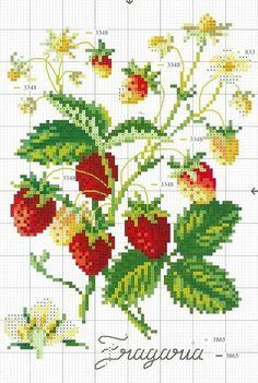 Fraises...strawberries