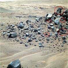Ancient remains on Mars: Head of animal figure with horns and ...
