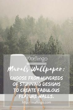 Murals are back but this time it's all about wallpaper! Don't take my word for it, feast your eyes on the stunning designs on offer at Murals Wallpaper. Fantastic Wallpapers, Wow Factor, Custom Wallpaper, Textured Wallpaper, Kids And Parenting, Murals, Feature Walls, Playrooms, Backdrops