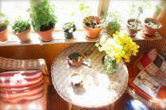 Wicker and beautiful plants. Love.