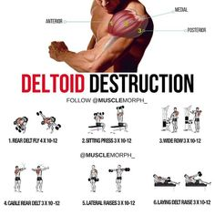 Want 3D DELTOIDS? Try this workout SAVE it & use it at the gymLIKE & FOLLOW @musclemorph_ for more exercise & nutrition tips TAG A GYM BUDDY . Enhance your progress with high quality supplementation from @musclemorph_ Available here ➡MuscleMorphSupps.com #MuscleMorph