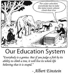 education system: Our education system