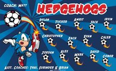 Hedgehogs-41524 digitally printed vinyl soccer sports team banner. Made in the USA and shipped fast by BannersUSA. www.bannersusa.com