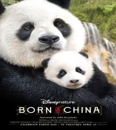 Watch Born in China Full Movie 2017 ONline Free Download