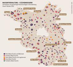 Massentierhaltung - Flächendeckend. Vorhandene und genehmigte Nutztieranlagen in Brandenburg.