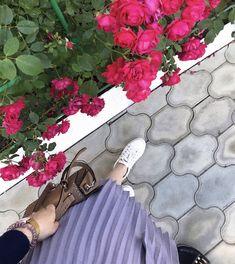 Korean, Rose, Asian Fashion, Pink, Korean Language, Roses