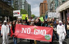 Good news for a change! How Congress Just Stuck it to Monsanto   The Nation