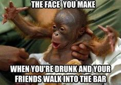 monkey pic friends at the bar | The Face You Make When Meme