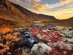 khibiny mountains, russia   Malaya Belaya River, Khibiny Mountains, Kola Peninsula, Russia