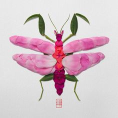 """Natura Insects-Fallen Rose Petals: """"Mantis"""" These were made with rose petals I gathered on a particularly windy day. - by reikan_creations Land Art, Butterfly Images With Flowers, Traditional Japanese Art, Found Object Art, Insect Art, Paper Artwork, Animal Sculptures, Metal Sculptures, Wood Sculpture"""