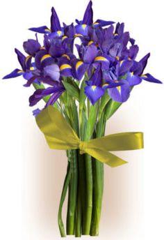 ma ma....always blooming for everyone else! we love you ma ma......