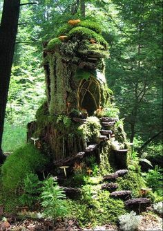 Get creative with your outdoor fairy gardens! We love this tree stump turned fairy home idea!