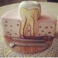 So cool! Though I hope the other half of the cake didn't go to waste . ____________ Tag your friends Dental Cake, Birth Cakes, Farewell Cake, Cupcake Cookies, Cupcakes, Tooth Cake, Cake Design Inspiration, Dental Assistant Jobs, 1st Birthday Cakes