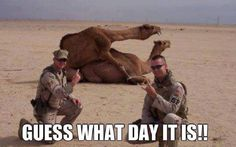 Guess what day it is!!! LMAO. Sorry I know this is a little....inappropriate but OMG how freakin' hilarious.