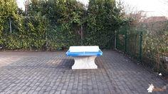 Pingpongtafel Afgerond Blauw bij Basisschool De Toverfluit GO in Sint-Jans-Molenbeek