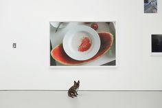 """Someone should do those dishes. Wolfgang Tillmans """"New York Installation PCR, 533 NE,"""" 2015 in PCR at David Zwirner Gallery. September 16 - October 24, 2015 To see more photos from this exhibition visit ArtBlogDogBlog.com!"""