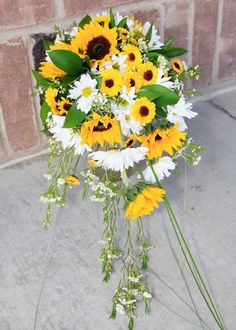 Sunflower cascade bouquet, and yeah, they're all real.  Yellow and white wedding flowers, sunflowers and daisies.