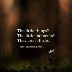 little things little moments..
