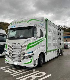 New Trucks, Cool Trucks, Camper Boat, Fiat, Transportation, Livestock, Vehicles, Trailers, Euro