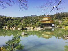Kyoto 2016 ❤️