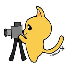 Logo_AYellowCat_Photo