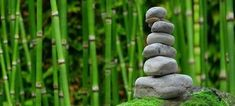 Do you want to build a Japanese Zen garden in your own backyard? But first, what exactly is Zen? Dalai Lama, On Thin Ice, Eco Friendly Cleaning Products, Eco Baby, Thought Of The Day, Chinese Medicine, Thich Nhat Hanh, Feng Shui, Garden Sculpture