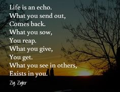 Life is an echo. What you send out, comes back. What you sow, you reap. What you give, you get. What you see in others, exists in you. Zig Zigler