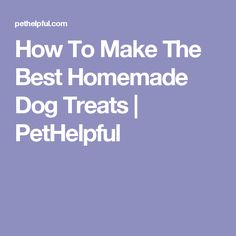 How To Make The Best Homemade Dog Treats | PetHelpful