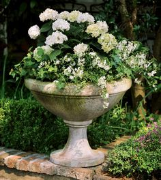 Charleston Gardens: Your source for seasonal and holiday decor, artisan-crafted home and garden furnishings and memorable gifts. Front Door Planters, Urn Planters, Porch Planter, Planter Ideas, Succulent Planters, Front Porch Flowers, Charleston Gardens, Garden Urns, Moon Garden