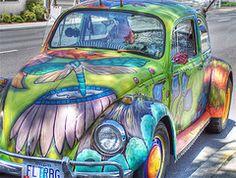 Flutter bug www.DirtyLovingHippies.com