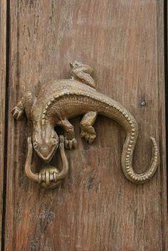 Lizard door knocker - Grant K. Gibson  Knock knock