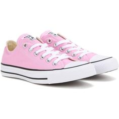 Converse Chuck Taylor All Star OX Sneakers ($75) ❤ liked on Polyvore featuring shoes, sneakers, pink, pink sneakers, pink shoes, converse trainers, converse sneakers and star shoes