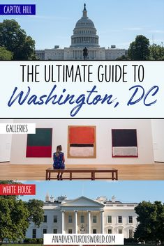 Are you heading to Washington DC for the first time? Here is my Washington DC itinerary on all the best things to do in the city! Solo Travel, Travel Usa, Travel Tips, Travel Videos, Time Travel, Washington Dc Travel, United States Travel, Cool Places To Visit, Adventure Travel
