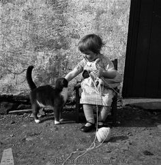 small girl, Shetland Islands during WWII, pauses in her knitting to pet a cat
