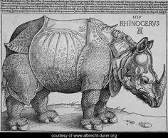 Albrecht Durer Rhino