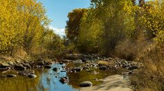 "Screen grab from Dennis Farris' video taken with his Blackmagic Cinema Camera. ""Sabino Creek where it runs through Canyon Ranch"" Tucson, Arizona"