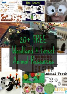 free woodland forest animal resources includes printables for handwriting, preschool unit studies, craft patterns and center activities for toddlers, preschool, kindergarten, and school aged children.