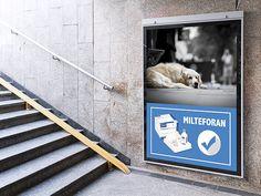 Já sabem da notícia? Aprovado remédio contra #Leishmaniose: #Milteforan. #virbac #Milteforan Saiba mais clicando na imagem.