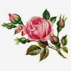 http://2.bp.blogspot.com/-_LpD27s8xgc/U9ISmJY1ytI/AAAAAAAABUo/D-kC8hmr-U0/s1600/rose4.jpg