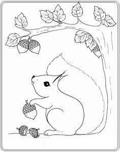 Free squirrel coloring page from BDDesigns. Autumn Crafts, Autumn Art, Autumn Trees, Fall Coloring Pages, Coloring Books, Applique Patterns, Quilt Patterns, Autumn Activities, Stuffed Animal Patterns