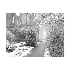 The Throat of Winter ❤ liked on Polyvore featuring backgrounds, pictures, photos, places, pics and scenery