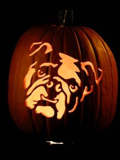 Bulldog pumpkin stencil for a Drake inspired Halloween!