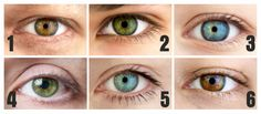They say the eyes are the window to the soul, and now science can back that claim up. Your eye color may actually play a role in your personality. Eye Color, Science, Eyes, Personality, Window, Successful Women, Brown Eyes, The Secret, Nature
