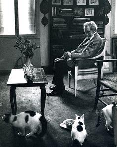 T.S.Eliot, el gran escritor estadounidense del último siglo, creador de La Tierra Baldía, mirando a sus gatos desde su asiento.